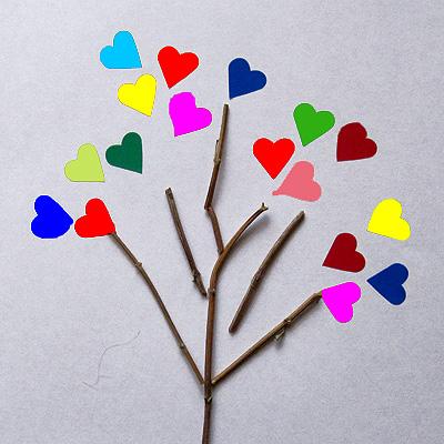 arbre cors