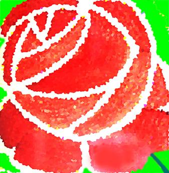 rosa-composició
