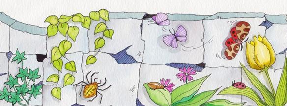 insectes-a-la-primavera