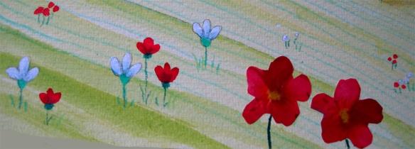 camp-amb-flors
