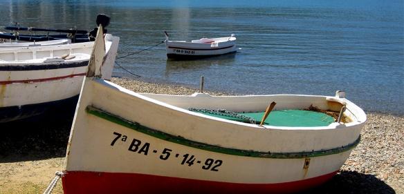 barques-PortS còpia