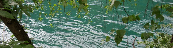 riu-rhone