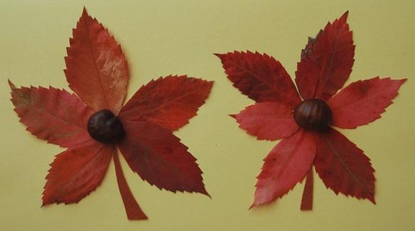 dues-flors-dues-castanyes
