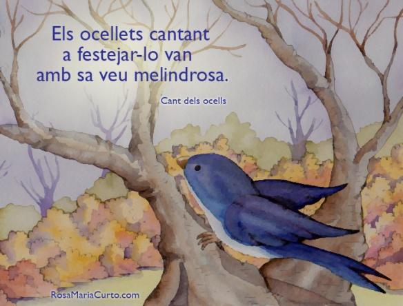 Cant-dels-ocells