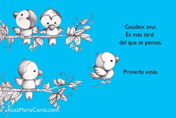 proverbi-xinès