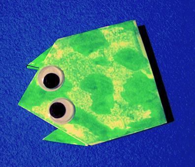 granota-plegatpaper